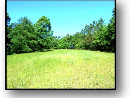 16.78 Acres In Calhoun County : Pittsboro : Calhoun County : Mississippi