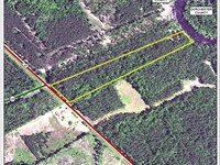 Edisto River Tract : Smoaks : Colleton County : South Carolina
