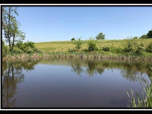 Beautiful 5 Acres With Pond : Patriot : Gallia County : Ohio