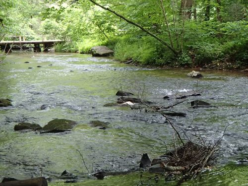 True Trout Stream, Pasture, Woods : Ellijay : Gilmer County : Georgia