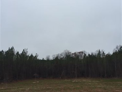 16+/- Acre Mini-Farm : Lafayette : Chambers County : Alabama