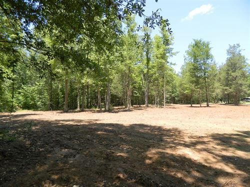 Nice Buildable Tract With Hardwood : Lexington : Oglethorpe County : Georgia