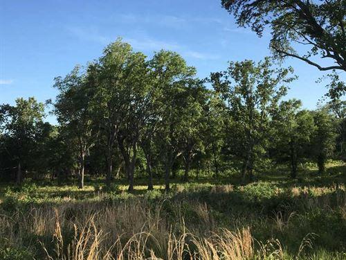 Maryfield Plantation Rd. : Woodbine : Camden County : Georgia