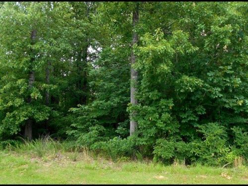Lot In Mallard Lake Subdivision : Raymond : Hinds County : Mississippi