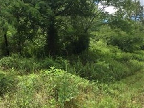 7.16 +/- Acres, Bartow County : Adairsville : Bartow County : Georgia