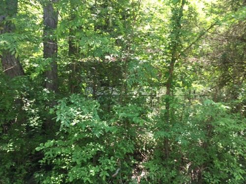 15.5+/-Acres Unrestricted : South Pittsburg : Marion County : Tennessee