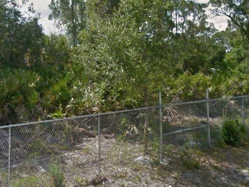 Okeechobee County, Fl $78,000 Neg : Okeechobee : Florida