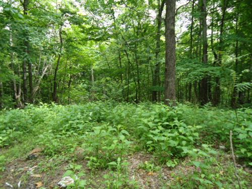 5.52 Acres Wooded In Clay Co. : Celina : Clay County : Tennessee