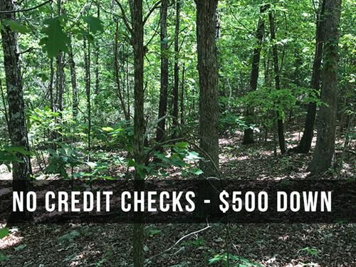 8 Acres Near National Forest : Birch Tree : Shannon County : Missouri