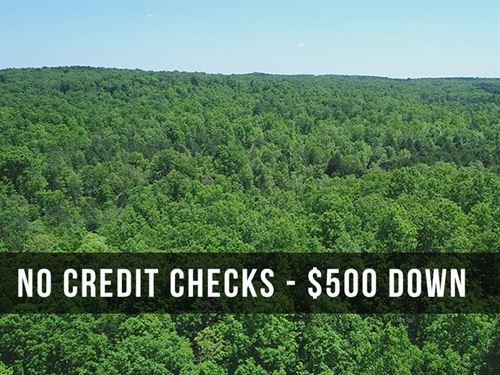 8 Acres By Mark Twain Forest : Birch Tree : Shannon County : Missouri