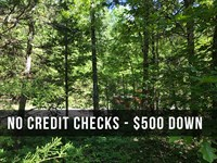 6 Acres Attached To National Forest : Birch Tree : Shannon County : Missouri