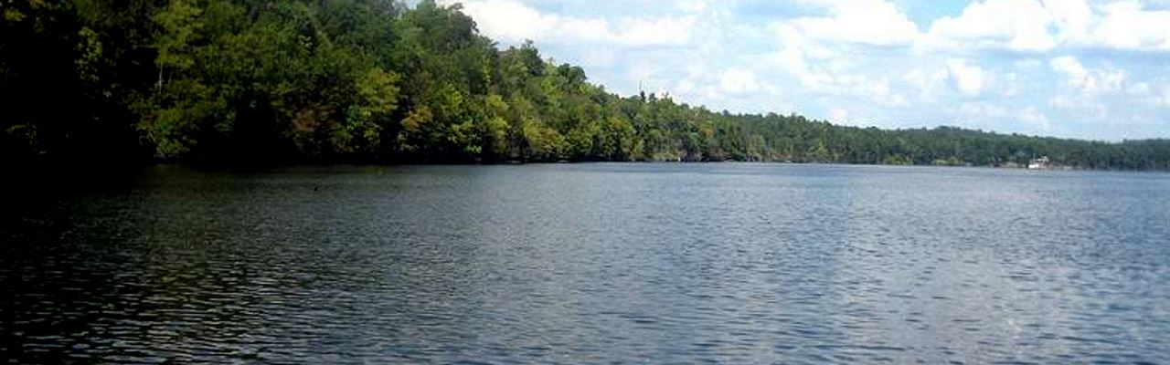 6 Waterfront Lots Wholesale