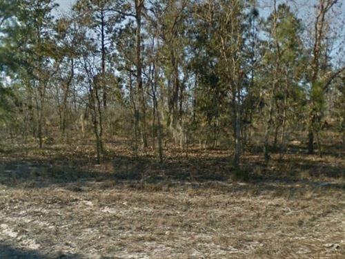 Putnam County, Fl $45,000 Neg : Interlachen : Putnam County : Florida