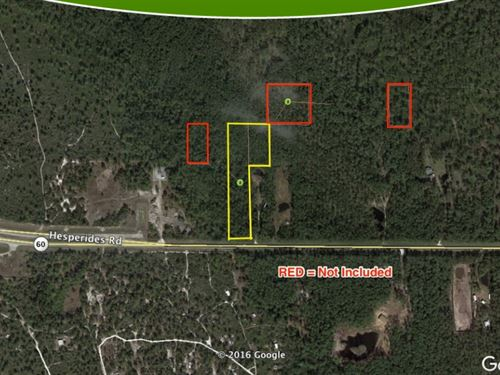 5 Acres Recreational River Ranch : Lake Wales : Polk County : Florida