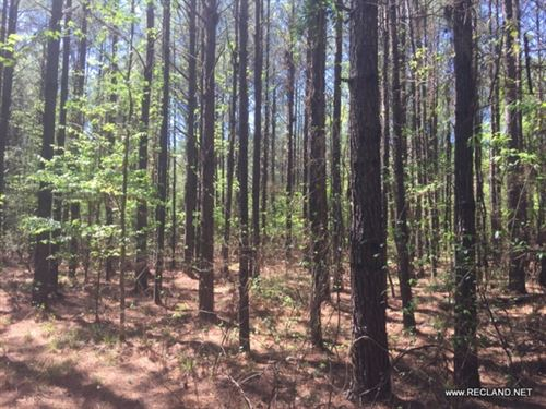 11 Ac - Pine Plantation Ready To Th : Strong : Union County : Arkansas