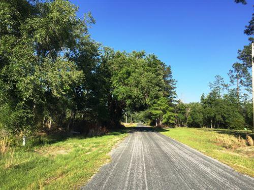 Paradise Road North Tract : Ruffin : Colleton County : South Carolina
