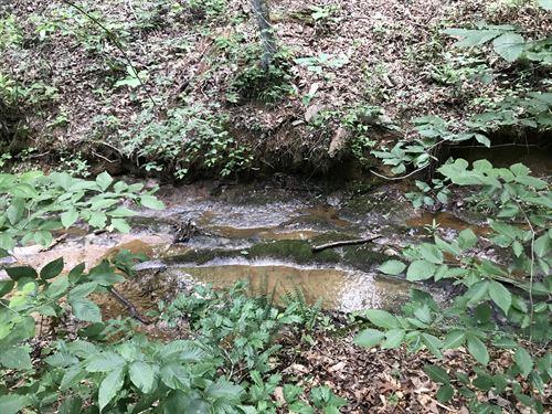 5.05 +/- Wooded Acres, Cherokee Co : Waleska : Cherokee County : Georgia