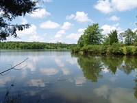 .50 Acres Waterfront Residentia : Laurens : Laurens County : South Carolina
