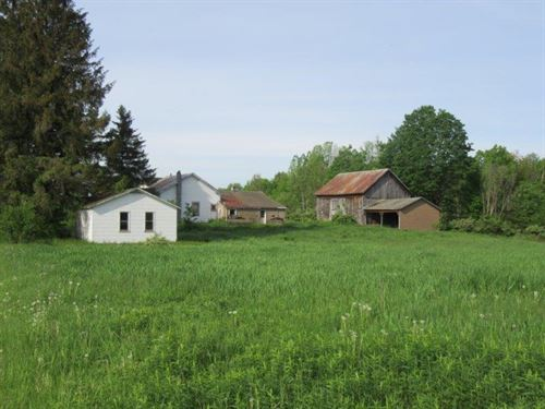 19 Acres Farmhouse And Farmland : Camden : Oneida County : New York