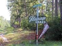Flamingo Lakes : Montgomery : Montgomery County : Texas
