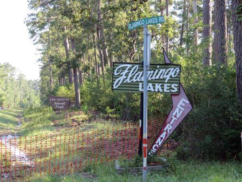 Flamingo Lakes : Montgomery : Texas
