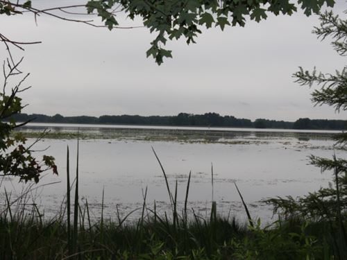 Incredible Lake Seminole View Lot : Bainbridge : Decatur County : Georgia