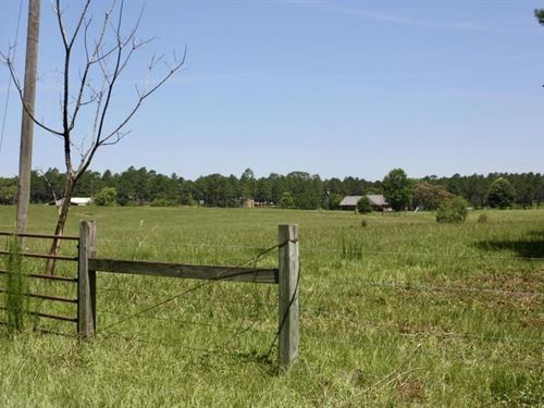 Land For Home, Mini Farm, Purvis, L : Purvis : Lamar County : Mississippi