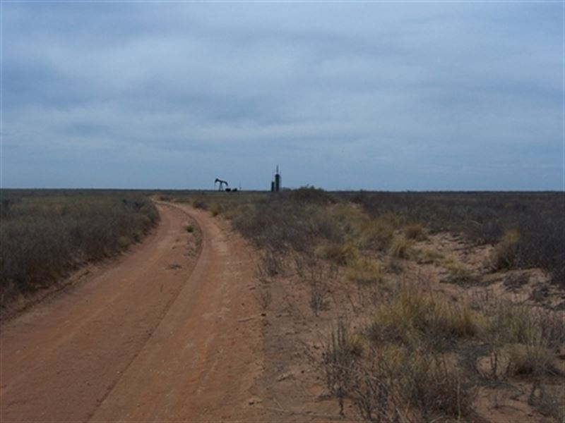 cochran county Browse mineral owners, royalty interests, appraised values, etc, for oil and gas properties in cochran county, tx we have the most comprehensive database of cochran county, tx mineral.