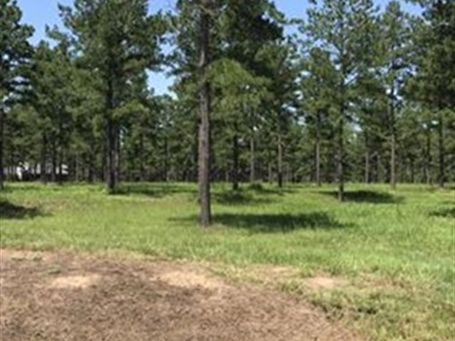 5 Acres In Beautiful Gated Subdvn : Perry : Peach County : Georgia