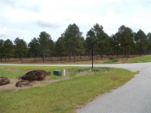 7+ Acres In Gated Community : Perry : Houston County : Georgia
