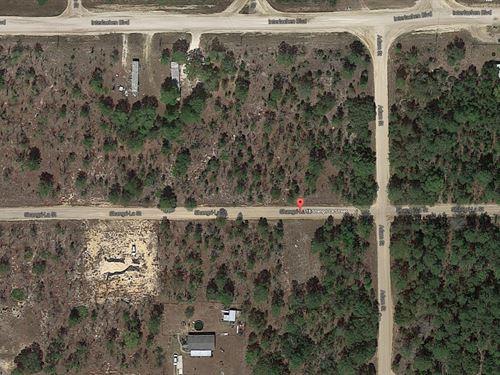 .23 Acres In Interlachen, FL : Interlachen : Putnam County : Florida