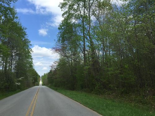 16.7 +/- Wooded Acres, Haralson Co : Buchanan : Haralson County : Georgia