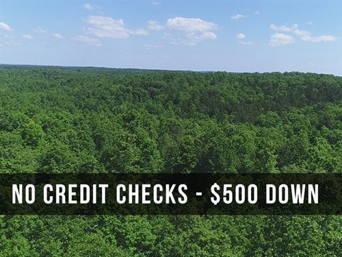 5 Acres On National Forest : Birch Tree : Shannon County : Missouri