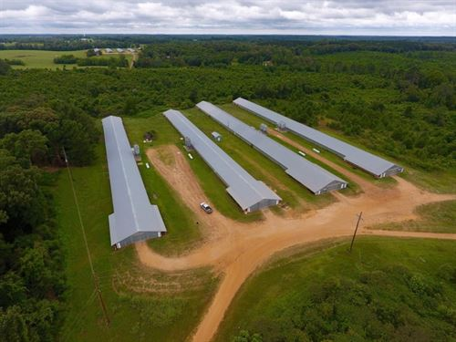 4 House Broiler Farm On 20 Acres, D : Downsville : Union Parish : Louisiana