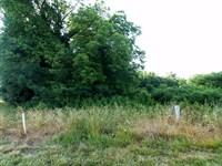 96 Beautiful Lot In Buckhead Manor : Madison : Morgan County : Georgia