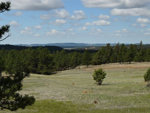 Eagles Nest Ii At Canyon Rim Ranch : Hot Springs : Custer County : South Dakota