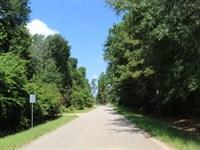 Black Oak 5.28 Acres : Magnolia : Montgomery County : Texas