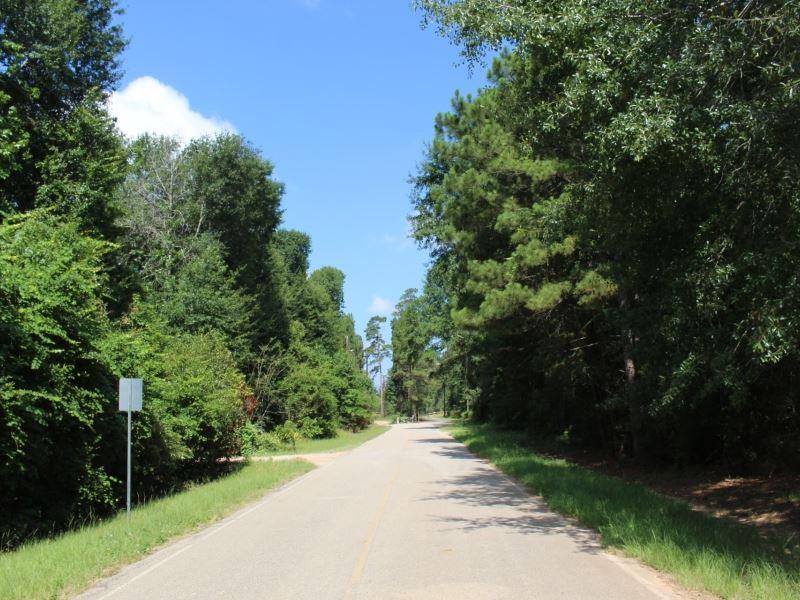 Black Oak 5 28 Acres Lot For Sale Magnolia