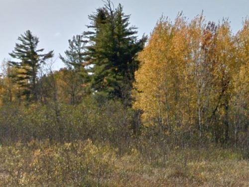Douglas County, Wi $10,000 Neg : Parkland : Douglas County : Wisconsin