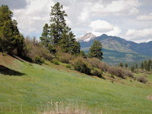 Reserve At Pagosa Peak, Lot 137 : Pagosa Springs : Archuleta County : Colorado
