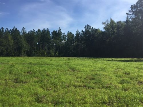14 Acres Creek Frontage Home Site F : Columbia : Marion County : Mississippi