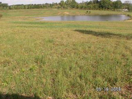 Lockett Creek West Lots : Farmville : Prince Edward County : Virginia