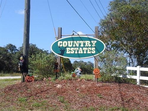 .14 Acres In Lake Wales, FL : Lake Wales : Polk County : Florida