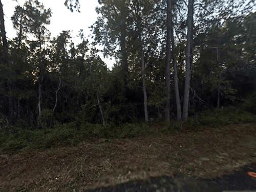 .94 Acres In Saint Augustine, FL : Saint Augustine : Saint Johns County : Florida