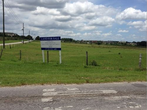 12 Acres In Zephyrhills, Fl : Zephyrhills : Pasco County : Florida
