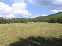 14 Acres, Meadow, Woods, Creek : Pikeville : Bledsoe County : Tennessee