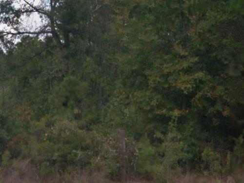 Grimes County, Tx $15,000 Neg : Planterville : Grimes County : Texas