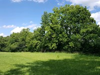 Clermontville Rd - 5 Acres : New Richmond : Clermont County : Ohio