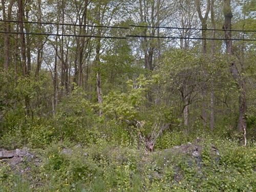 .84 Acres- Salt Point, Ny 12578 : Salt Point : Dutchess County : New York