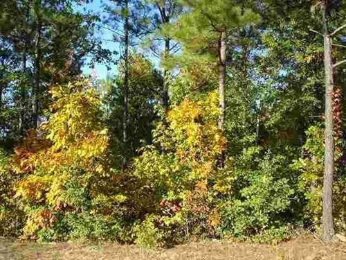 1.09 Acres- Hot Springs Village, Ar : Hot Springs Village : Garland County : Arkansas